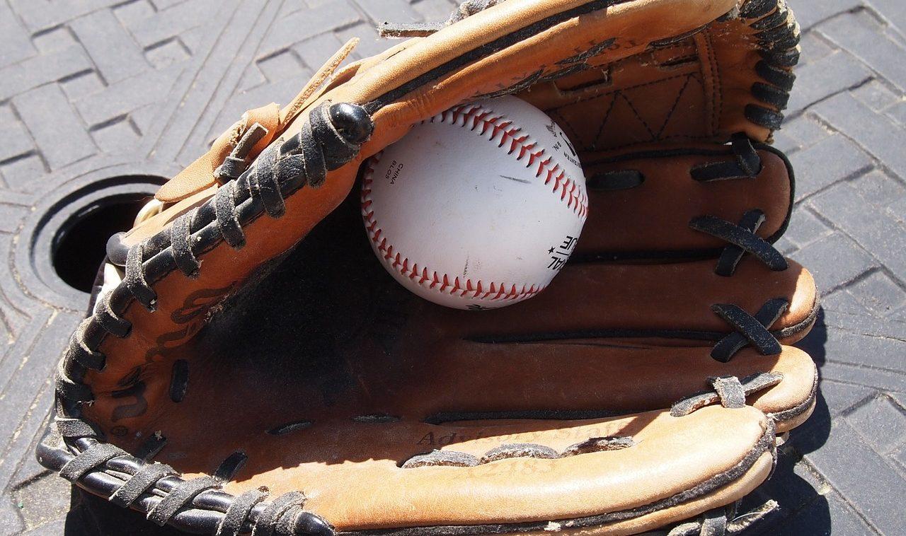 baseball golve